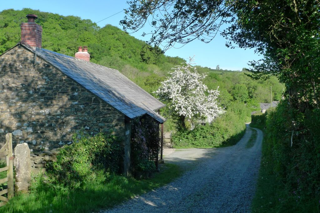 bat survey house planning permission barn conversion wildlife extension wildlife checklist wildlife trigger list